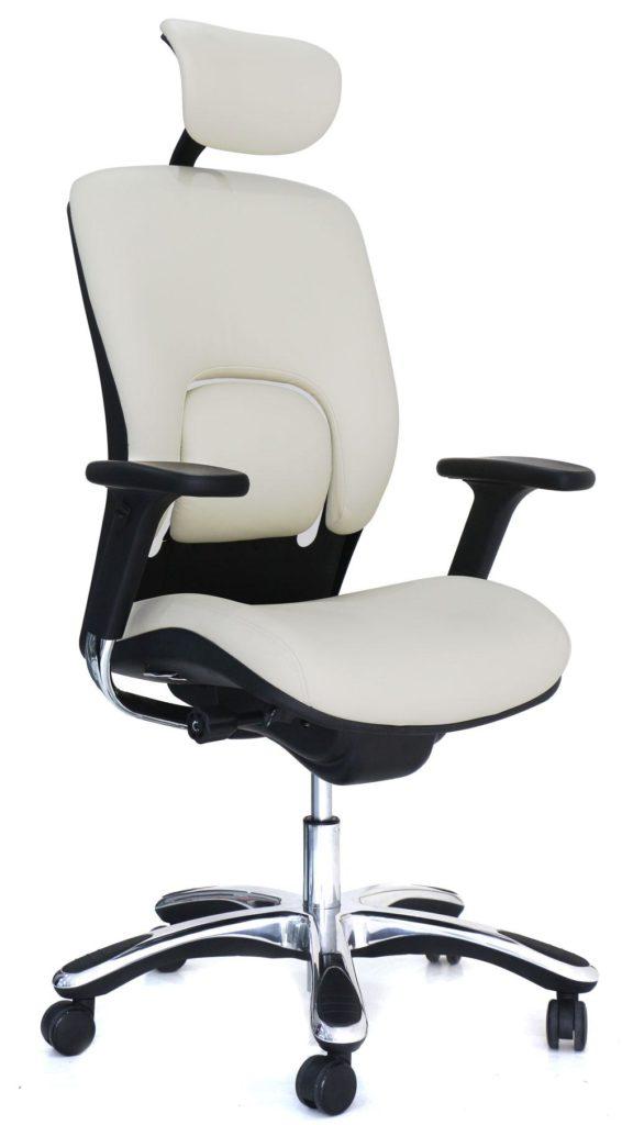 16 Best Ergonomic Desk Chair for Home Office Setup 2